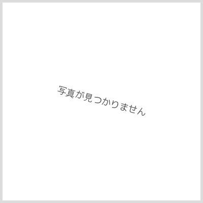画像1: 〔状態S〕暴走龍5000GT{P14/Y16}《火》