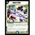 【自然】神秘の宝箱[R]{PRP55/Y9}